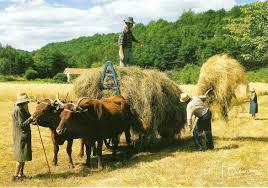 La Fête de la ferme et des métiers d'antan